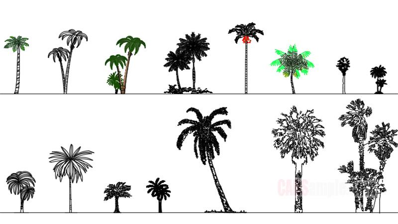 Palms Free Dwg Blocks
