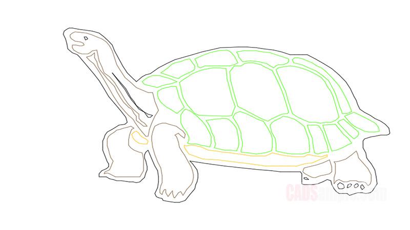 Turtle Dwg Drawing