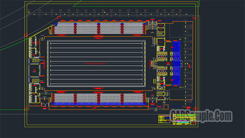 Olympic Swimming Pool Dwg Project